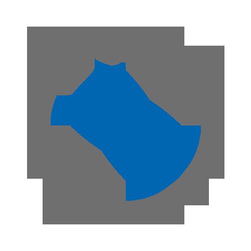 Idex BMW